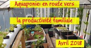 Aquaponie en route vers la productivité - Avril 2018