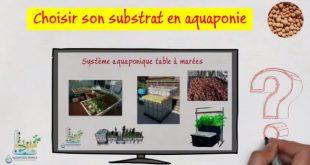 Choisir son substrat en aquaponie