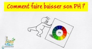 Comment baisser son PH en aquariophilie et aquaponie