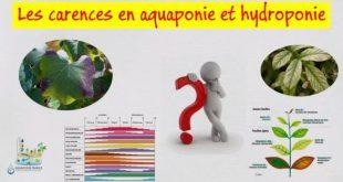 Déterminer et traiter les carences en aquaponie et hydroponie
