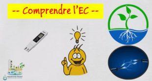 Hydroponie tout savoir sur l'EC (électro-conductivité)