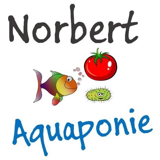 Logo carré norbert aquaponie