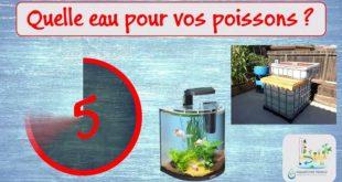 Quelle eau pour vos poissons en aquariophilie et aquaponie