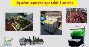 Système aquaponique table à marées