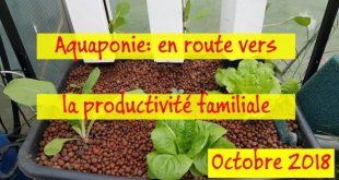 Aquaponie en route vers la productivité familiale - Octobre 2018