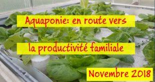 Aquaponie en route vers la productivité familiale - Novembre 2018