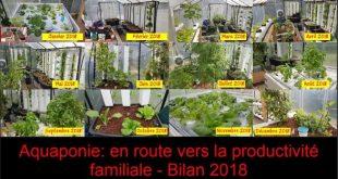 Aquaponie en route vers la productivité familiale - Bilan 2018