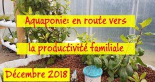 Aquaponie en route vers la productivité familiale - Décembre 2018