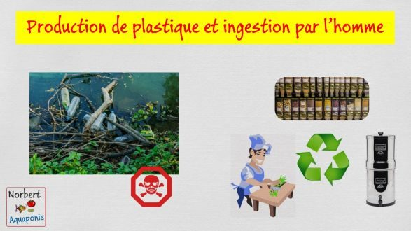 Production de plastique et ingestion par l'homme