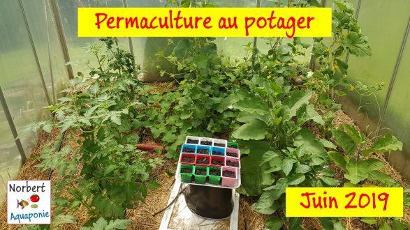 Permaculture Juin 2019