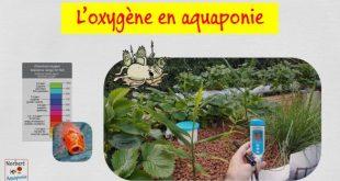 L'oxygène en aquaponie