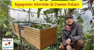 Aquaponie et Permaculture - Interview de Damien Dekarz