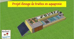 Projet élevage de truites en aquaponie - Version 2