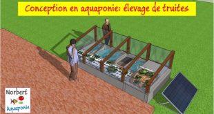 Projet élevage de truites en aquaponie - Version finale