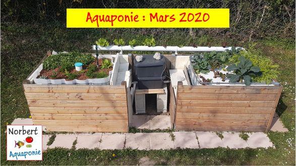 Aquaponie - Mars 2020
