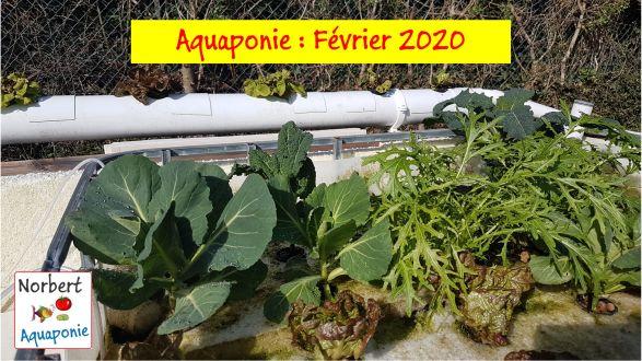 Norbert Aquaponie février 2020