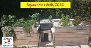 Norbert Aquaponie Août 2020